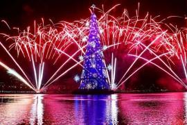 世界のおもしろクリスマスツリー☆